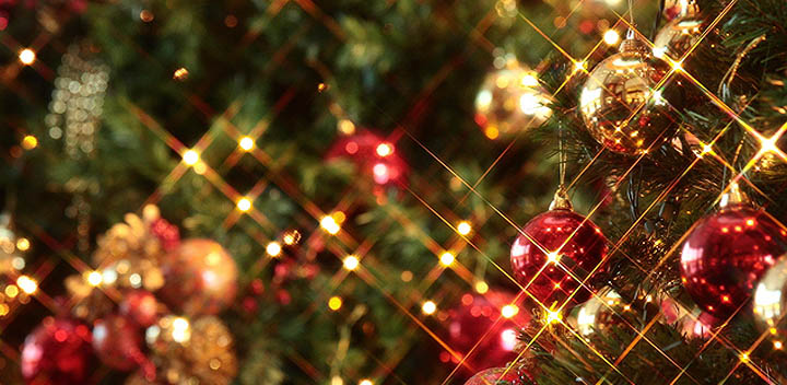 ビストロ・メゾン・ドゥ・シェフよりクリスマスディナー予約案内