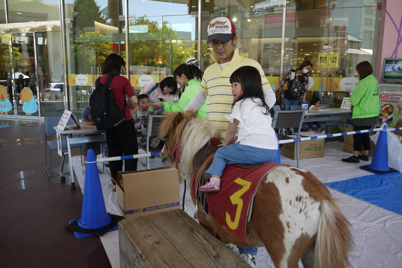 DASH福山駅前プレゼンツ、ポニーふれあいコーナー開催しました。