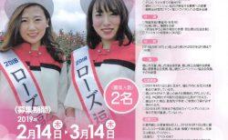 福山市から2019年度観光アシスタント募集のお知らせ